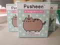 Pusheen Magnetic Kit